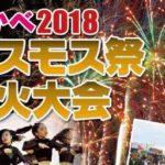 明日10月7日(日)に深谷市コスモス街道周辺で『おかべコスモス祭2018・花火大会』が開催されるみたい。【イベント情報】