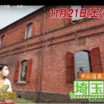 11月21日(土)放送の『出没!アド街ック天国』で本庄市が映るみたい。